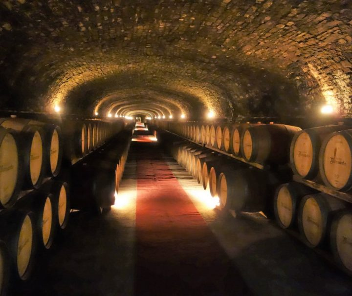 chianti winery tasting and tour